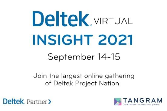 Deltek Insight Image